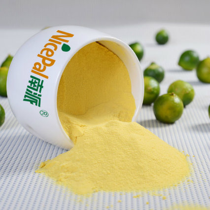 Pure Natural/Green Food/Good Taste Lime Fruit Juice Powder