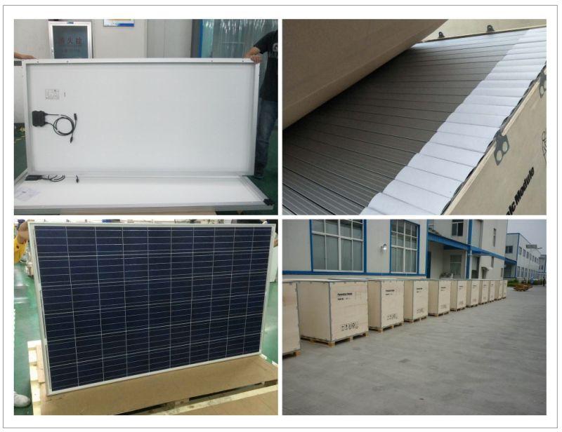 Un Grado De Calidad 260w 24v M 243 Dulo Solar Policristalino
