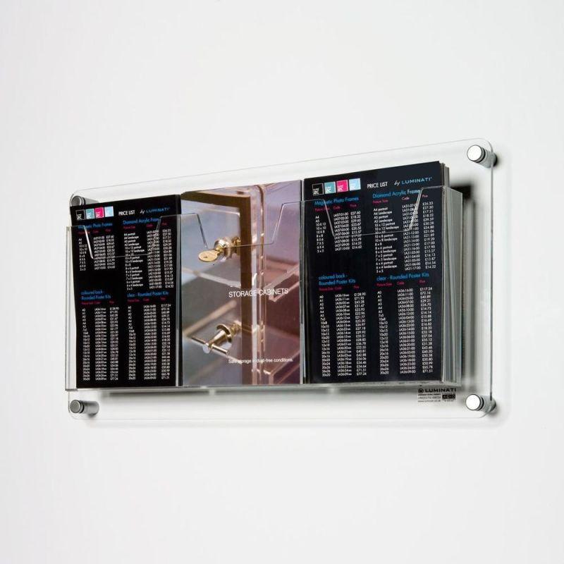 China Clear Acrylic Plexiglass Wall Mounted Brochure