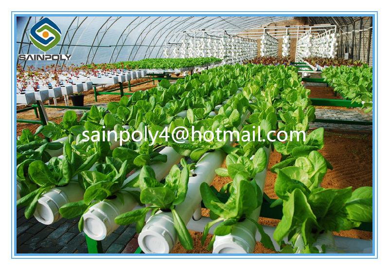 serra idroponica usata agricola del sistema completo