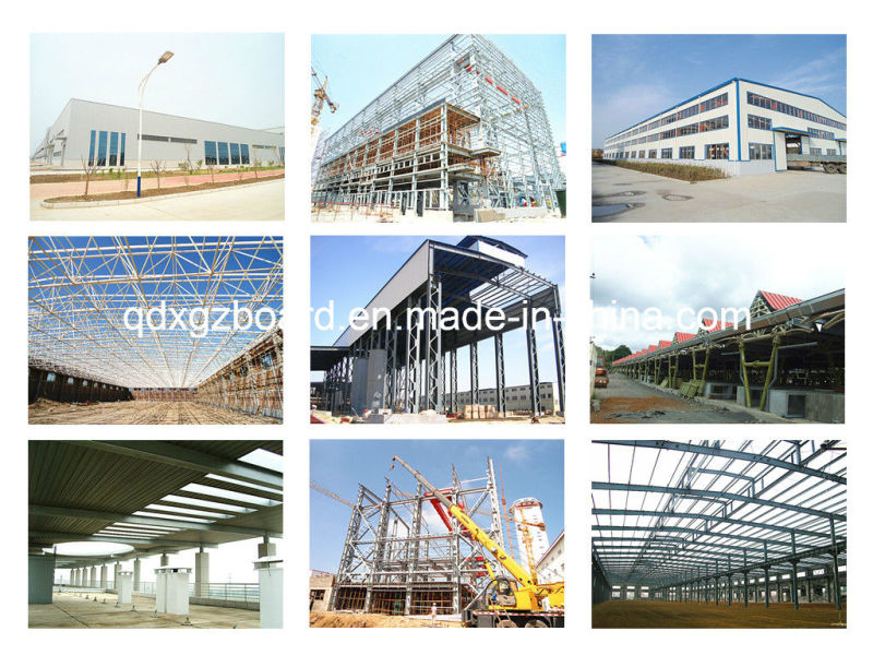 Light Steel Structure Warehouse/Building/Workshop (BYSS010902)
