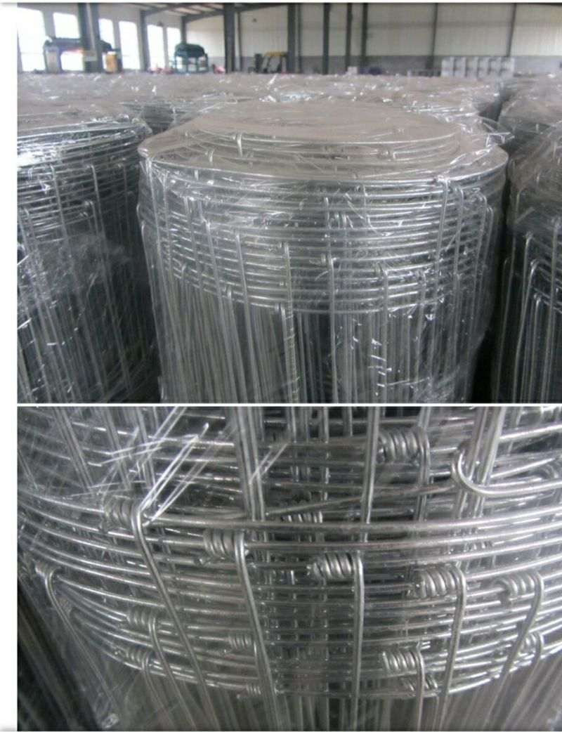 China All Kinds of Grassland Fence/Field Fence/ Cattle Fence - China ...